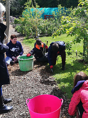 Herts and Essex Community Farm school visit